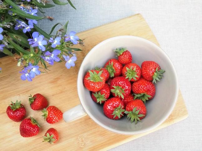 Erdbeeren bio kaufen lohnt sich